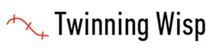 Diamond twinning wisp shown on GIA certificate
